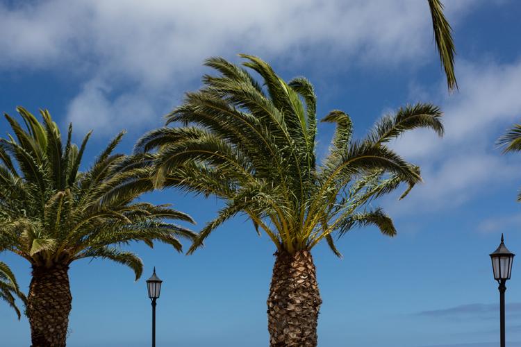 Las palmas on La Palma, Islas Canarias (E)
